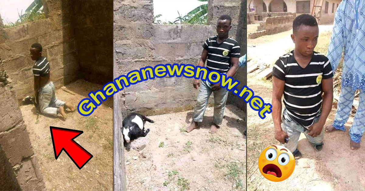 END TIME: Young Man Captured Live On Camera Chopp!ng A Goat [WATCH VIDEO]